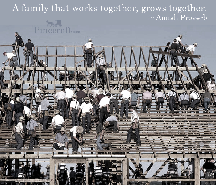Amish-Proverb-A-family-that-works-together-grows-together